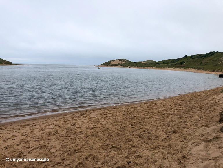 plage des phoques de newburgh