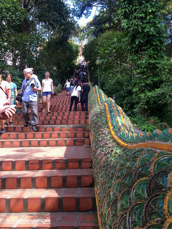 300 marches pour atteindre wat phratat doi suthep